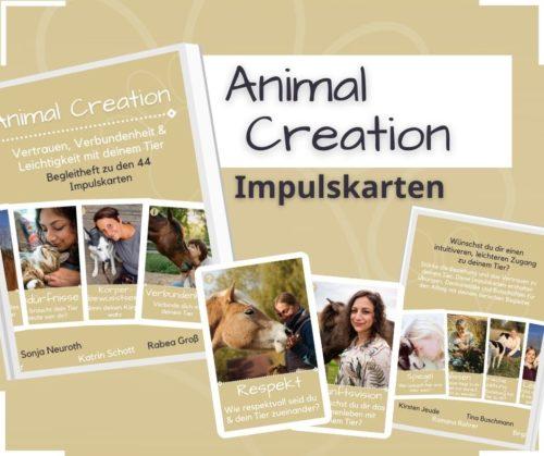 Tierkarten Impulskarten Animal Creation