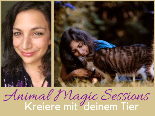 Animal Magic Sonja Neuroth Tierkommunikation Tiere verstehen Hund Katze Pferd