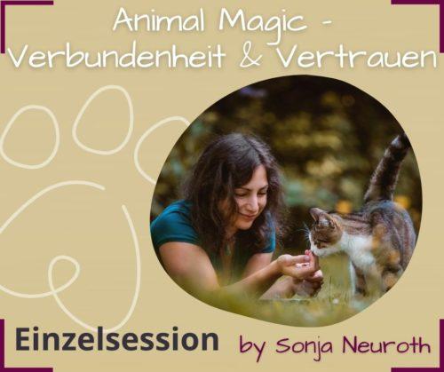 Verbundenheit Vertrauen Tier Tierkommunikation