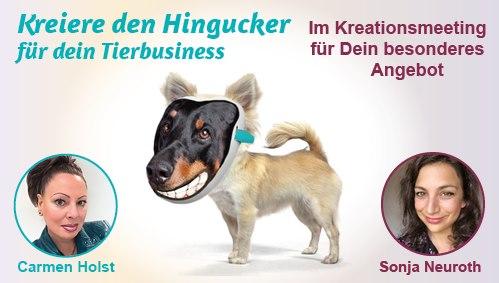 Tierbusiness Erfolg Sichtbarkeit Berufung mit Tieren Tierkommunikatorin