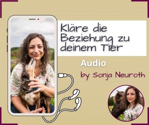 Beziehung Tier Entspannung Audio