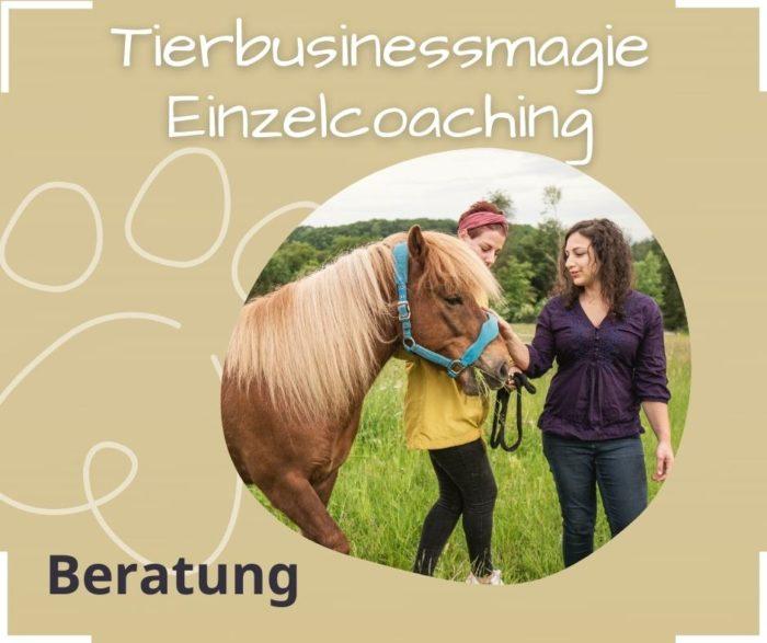 Erfolg im Tierbusiness Coching Tierexperte