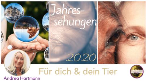Jahressehungen 2020 Medium Andrea Hartmann