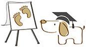 Tierakademie Tierwissen Tierkommunikation