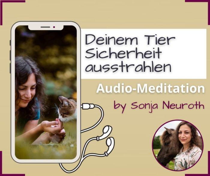 Meditation TIerkommunikation Tier Sicherheit ausstrahlen