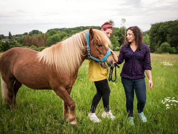 Tierberufung Pferdebusiness starten Anfängerkurs Tierkommunikation