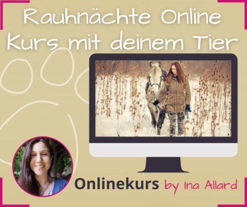 Rauhnächte mit deinem Tier verbringen online kurs