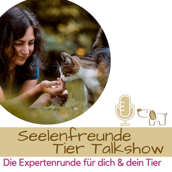 Talkshow online Tierkommunikation Podcast