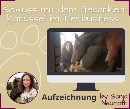 Tierberuf Tierbusiness Selbstvertrauen Tierberufung leben