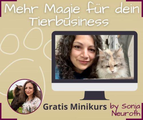 Tierbusiness Marketing gratis Kurs
