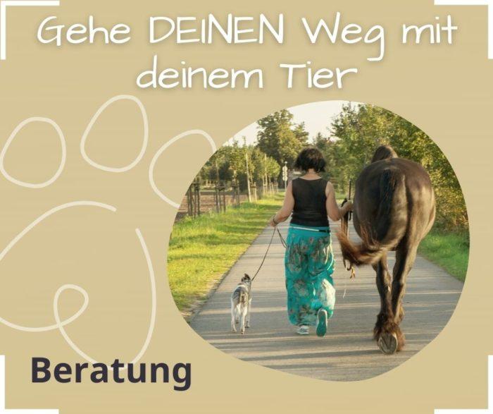 Tierkommunikation Selbstvertrauen vertraue dir Tier