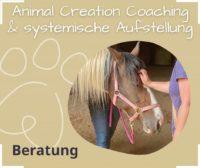 Tierkommunikation Systemische Aufstellung