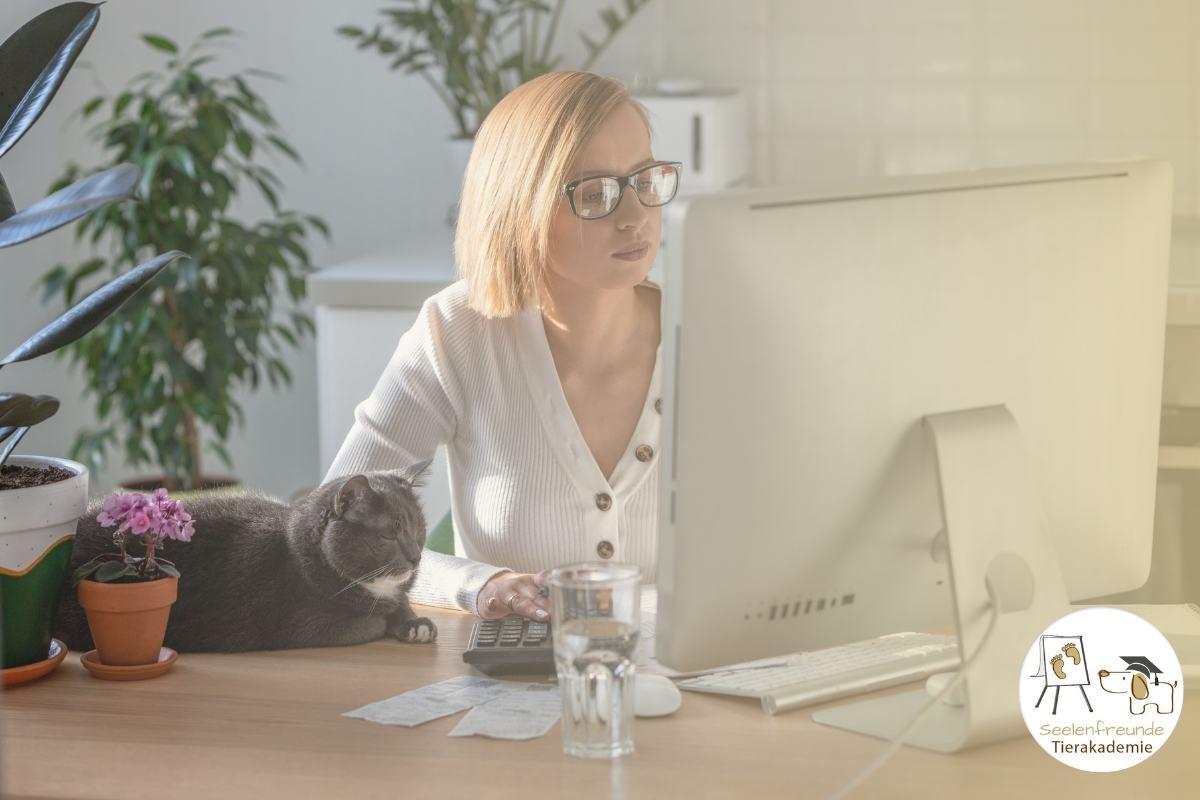 Tierkommunikation lernen online Tierkurse