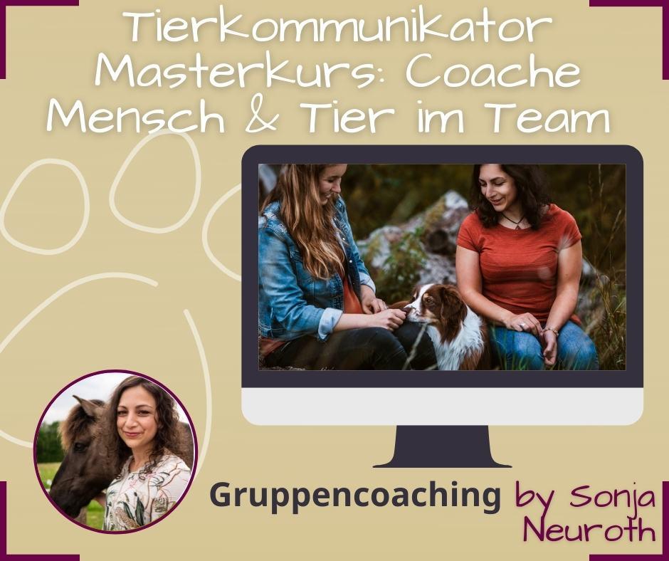 Tierkommunikator Masterkurs Ausbildung Tierkommunikation Masterkurs