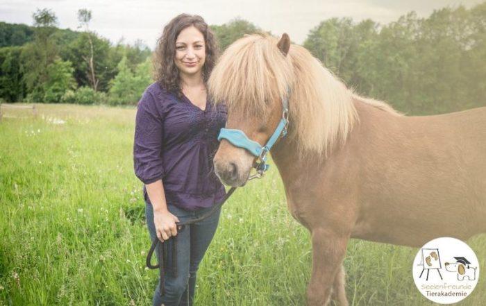 Profi Tierkommunikator werden Ausbildung
