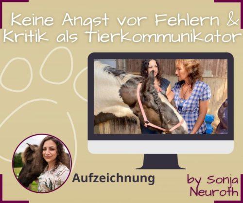 Tierkommunikatorin werden Kritik