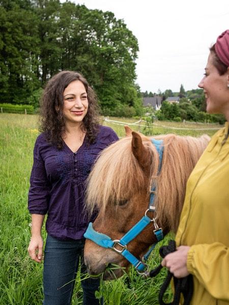 Tier Akademie Events Pferde Tierkommunikator