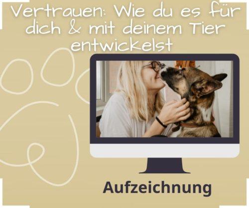 Vertrauen mit deinem Tier Tierkommunikation