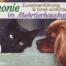 Mehrtierhaushalt Tiere zusammenführen Streit schlichten Hund Katze