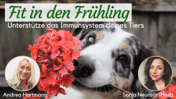 Immunsystem stärken Tiere Entgiftung Entschlackung Frühling
