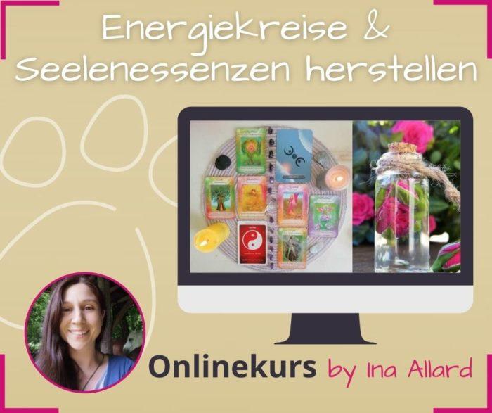 energiekreise und seelenessenzen selbst herstellen und mit symbolen arbeiten lernen online kurs ina allard
