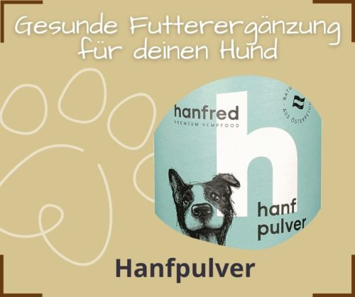 Gesunde Futterergaenzung Hund Hanfpulver Michelle Rasel Seelenfreunde Tierakademie