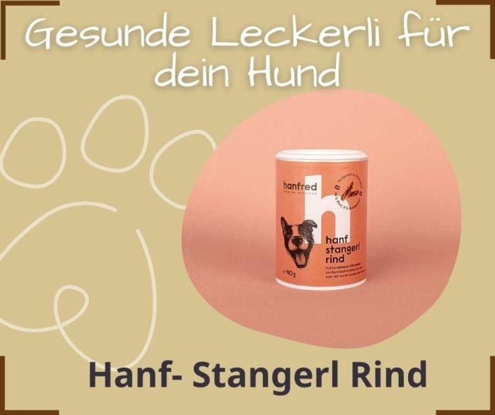 Gesunde Hanf Leckerlis Hund Michelle Rasel Seelenfreunde Tierakademie