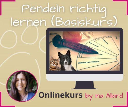 onlinekurs pendeln lernen basiskurs ina allard