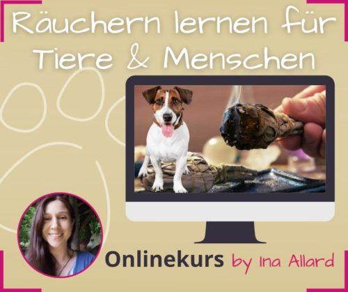 raeuchern fuer tiere und menschen lernen onlinekurs ina allard